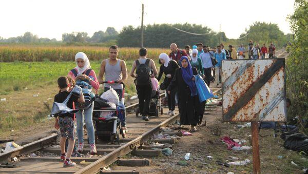 Беженцы, не успевшие перейти на венгерскую сторону, бредут вдоль границы