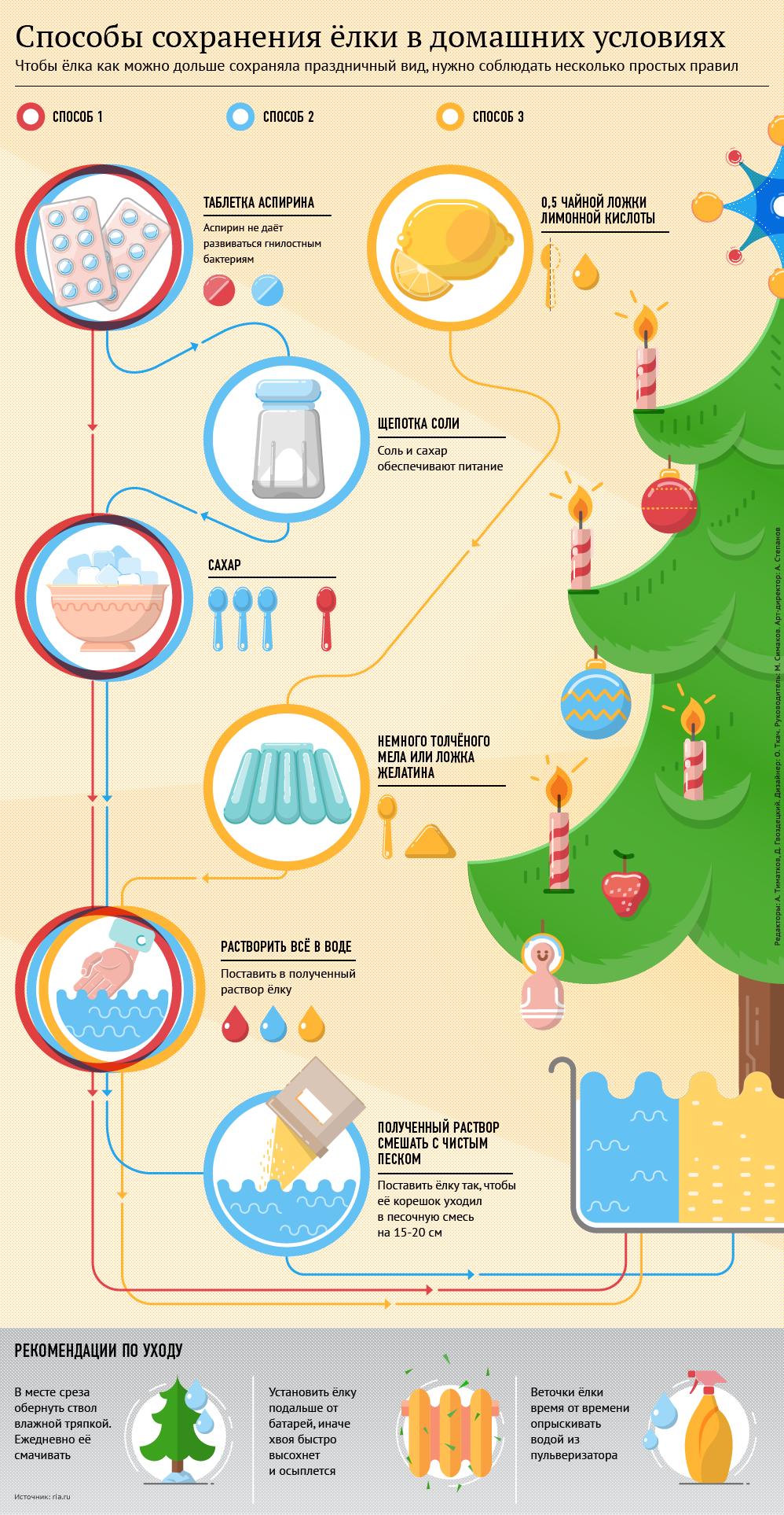 Способы сохранения елки в домашних условиях