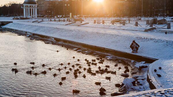 Онежское озеро в Карелии. Архивное фото