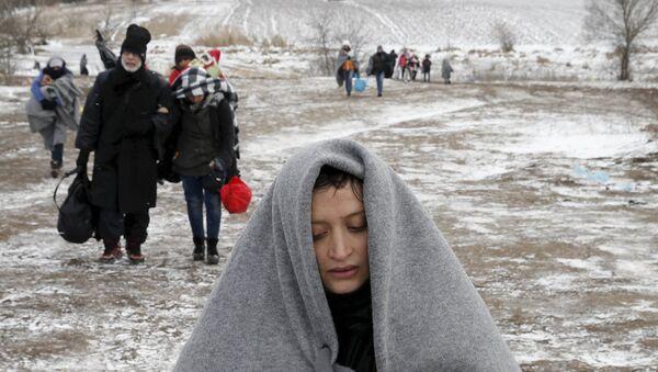 Мигранты пересекают границу Сербии и Македонии. Январь 2016
