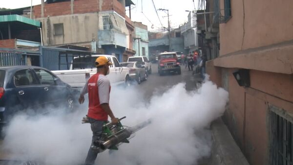 Окуривание дымом домов в Каракасе из-за вируса Зика и комментарий эксперта ВОЗ