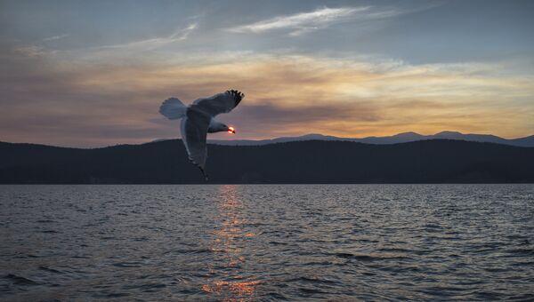 Ушканьи острова на озере Байкал. Архивное фото