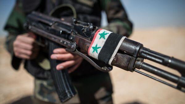 Боец Сирийской арабской армии (САА) в окрестностях города Мхин в Сирии. Архивное фото