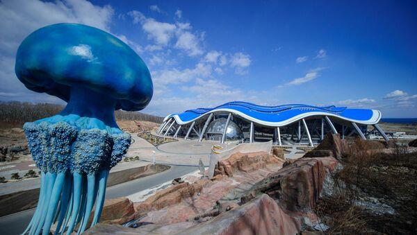 Главный корпус строящегося Приморского океанариума на острове Русский. Архивное фото