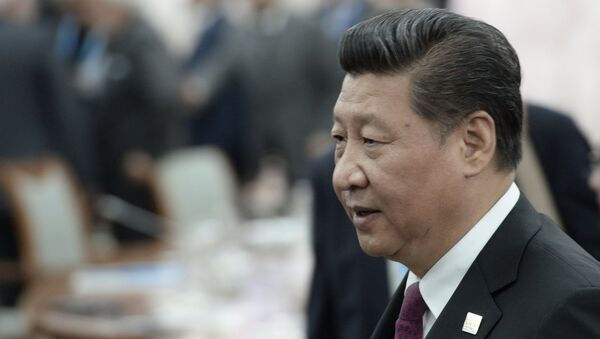 Си Цзиньпин. Архивное фото