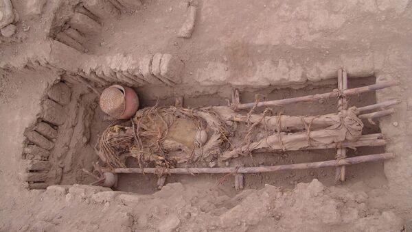 Останки древнего индейца, извлеченные из одной пирамид культуры Лима