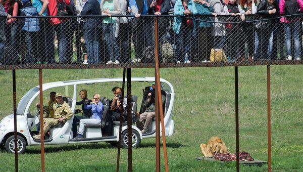 Посетители на электромбиле в сафари-парке Тайган