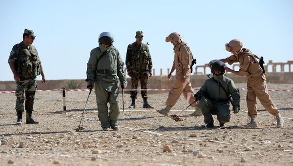 Российские саперы обучают сирийских солдат поисковой тактике и обнаружению взрывных устройств. Архивное фото