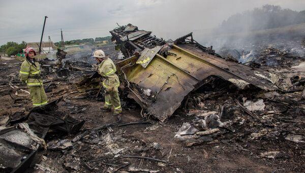 Спасатели работают на месте крушения малайзийского самолета Boeing 777 в районе города Шахтерск Донецкой области. Архивное фото