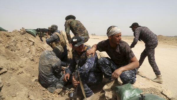 Иракская федеральная полиция ведет бой в окрестностях города Эль-Фаллуджа. Архивное фото