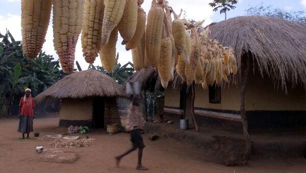 Малави. Архивное фото