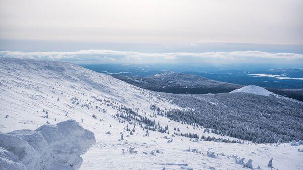 Зимний пейзаж. Архивное фото