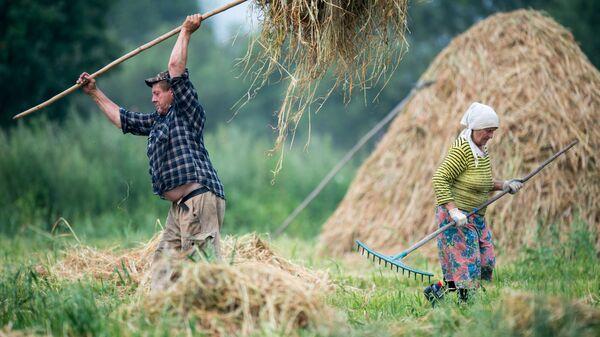 Жители деревни Бобровка Омской области во время заготовки сена