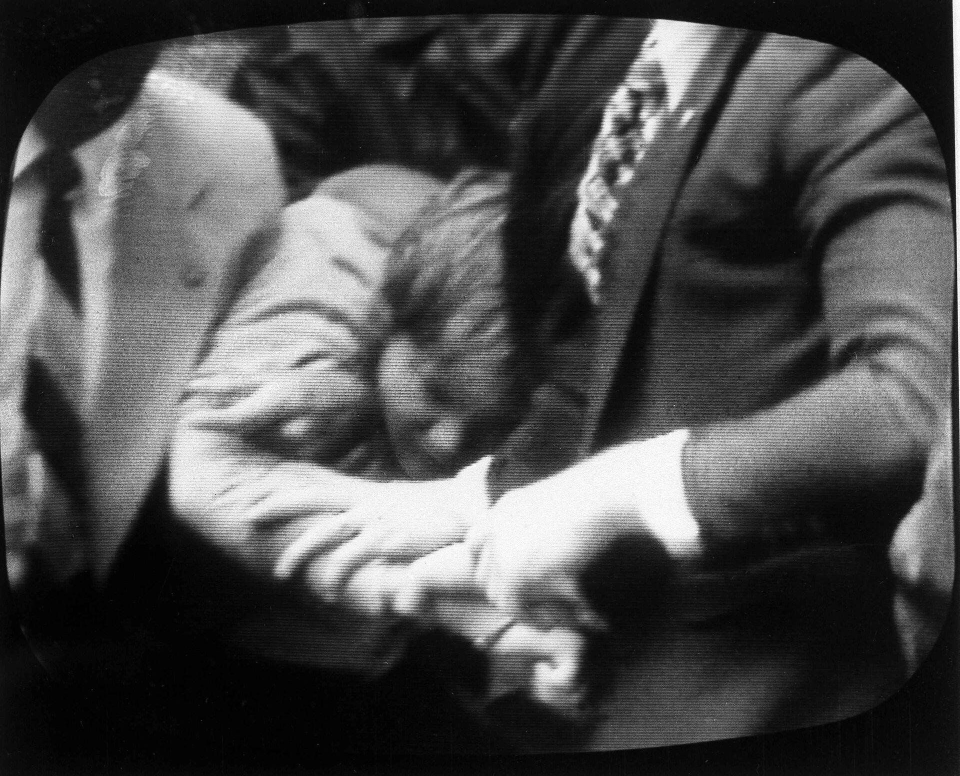 Задержание Джона Хинкли-младшего после его попытки покушения на президента Рональда Рейнана - РИА Новости, 1920, 13.10.2020