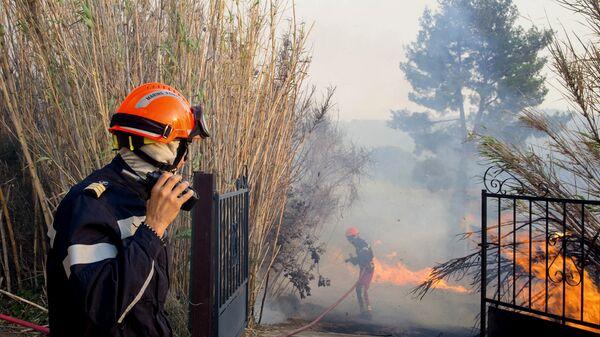 Пожарные во время тушения лесного пожара во Франции
