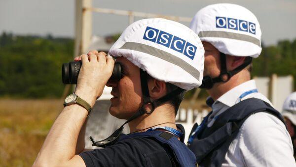 Представители инспекции ОБСЕ в Донбассе. Архивное фото