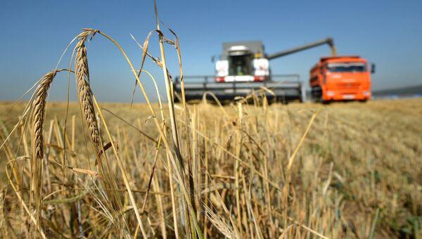 Уборка ячменя на полях в Свердловской области