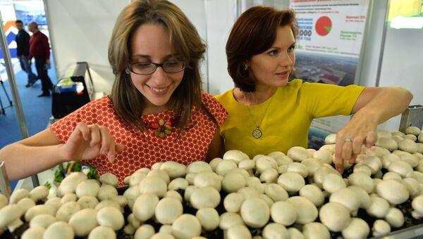 Посетители на международной специализированной выставке Импортозамещение в МВЦ Крокус Экспо в Красногорске