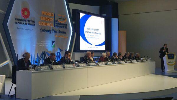 Участники Исполнительной Ассамблеи Мирового энергетического совета в Стамбуле