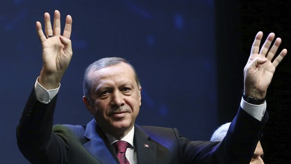 Президент Турции  Реджеп Тайип Эрдоган  в Анкаре. Архивное фото