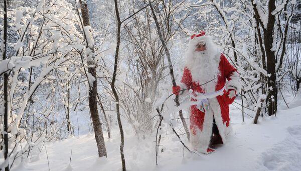 Дед Мороз в зимнем подмосковном лесу. Архивное фото.