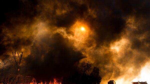 Лесные пожары в Кинбруке, штат Калифорния, США