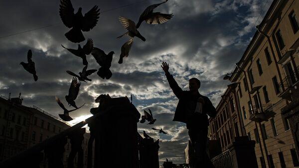 Молодой человек кормит голубей на канале Грибоедова в Санкт-Петербурге