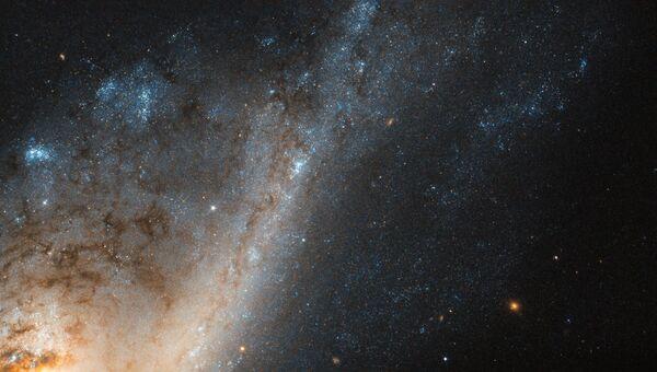 Яркая галактика NGC 4536, в которой формируются десятки новых звезд каждый год