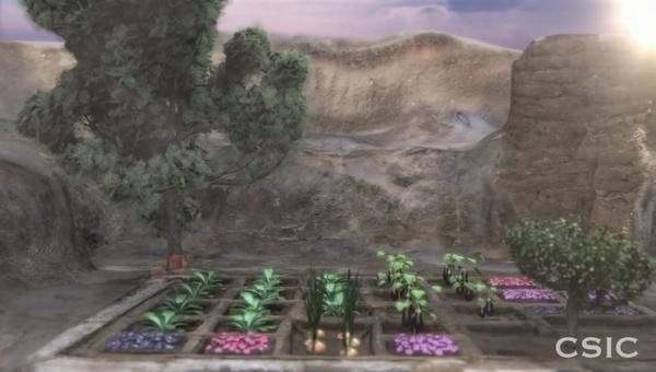 Первый древнеегипетский похоронный сад, открытый в Луксоре