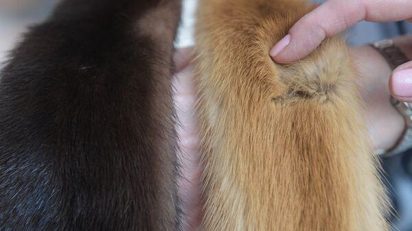 Меховые шкурки
