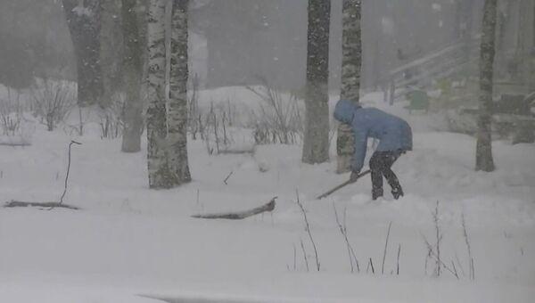 Майский снегопад в России, или Как встречают весну в Карелии