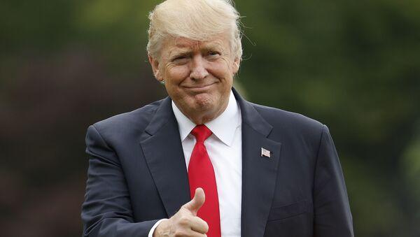 Президент Дональд Трамп. Архивное фото
