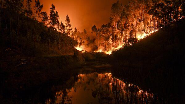 Лесной пожар в центре Португалии. 18 июня 2017