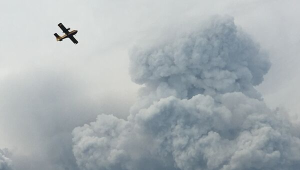 Самолет пролетает над дымом от лесных пожаров в Португалии