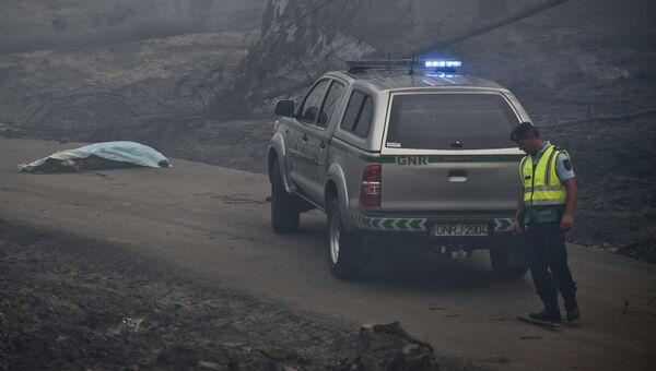 Сотрудник полиции в зоне лесных пожаров в Португалии