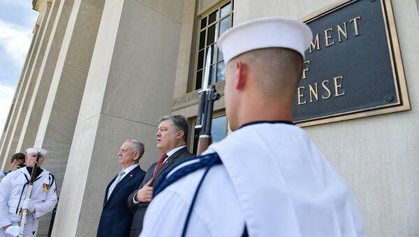 Президент Украины Петр Порошенко и министр обороны США Джеймс Мэттис во время встречи в Вашингтоне. 20 июня 2017