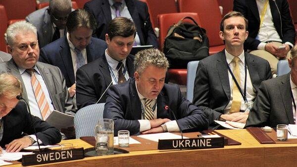Сергей Кислица на заседании Совета Безопасности ООН