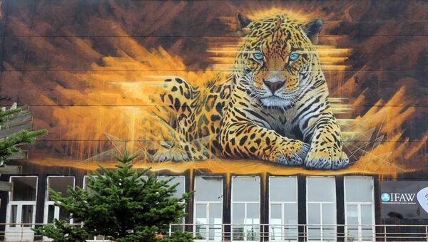 Граффити с леопардом украсил видовую площадку над Золотым мостом