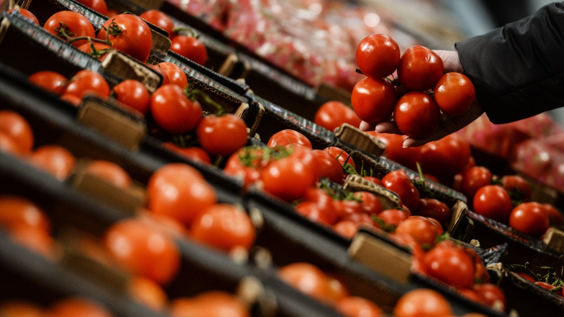 Экономист предупредил о росте цен на продукты