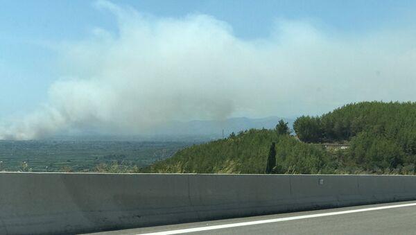 Пожар в регионе Мениди на западе Греции