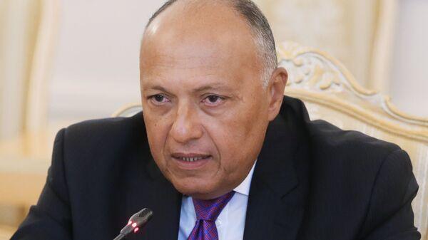 Министр иностранных дел Египта Самех Шукри. Архивное фото