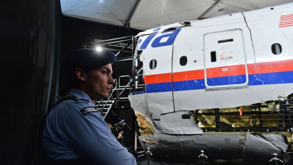 Обломки самолета Boeing 777 Malaysia Airlines (рейс MH17) в Нидерландах. Архивное фото