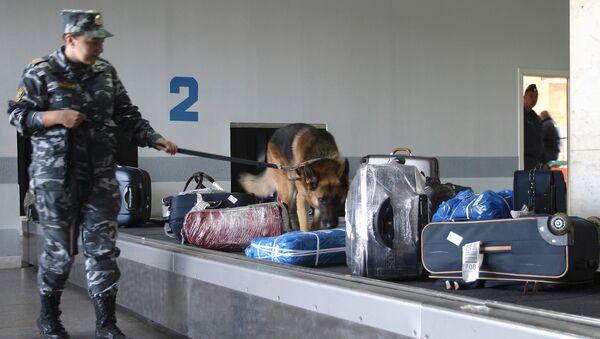 Кейс с двумя винтовками чешских биатлонистов улетел в Самару вместо Ханты-Мансийска