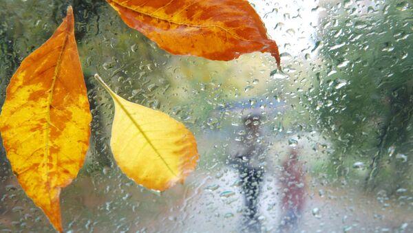 Москвичей ждут солнечная суббота и дождливое воскресенье
