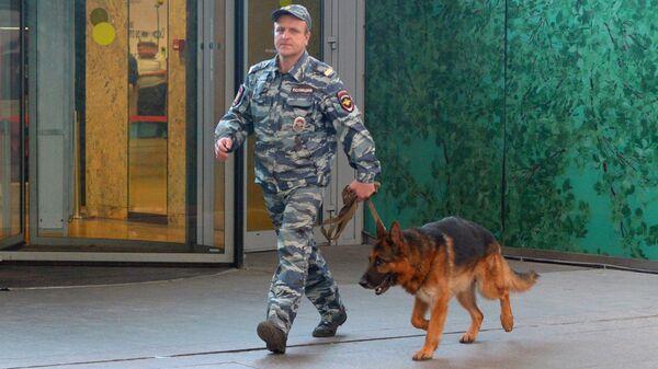 Кинолог с собакой после сообщения о минировании в Москве