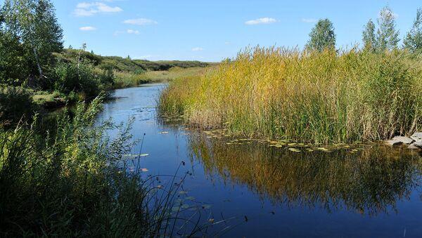 Экологическую реабилитацию рек в Балашихе планируют провести в ближайшее время