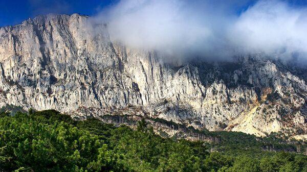 Вид на горы и лес вдоль трассы Ялта-Севастополь вблизи Алупки в Крыму.