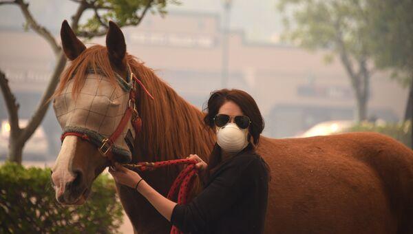 Женщина спасает лошадь во время пожара в Ориндже, Калифорния, США. 9 октября 2017