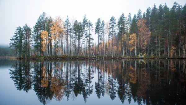 Озеро Толвоярви в Суоярвском районе Республики Карелия