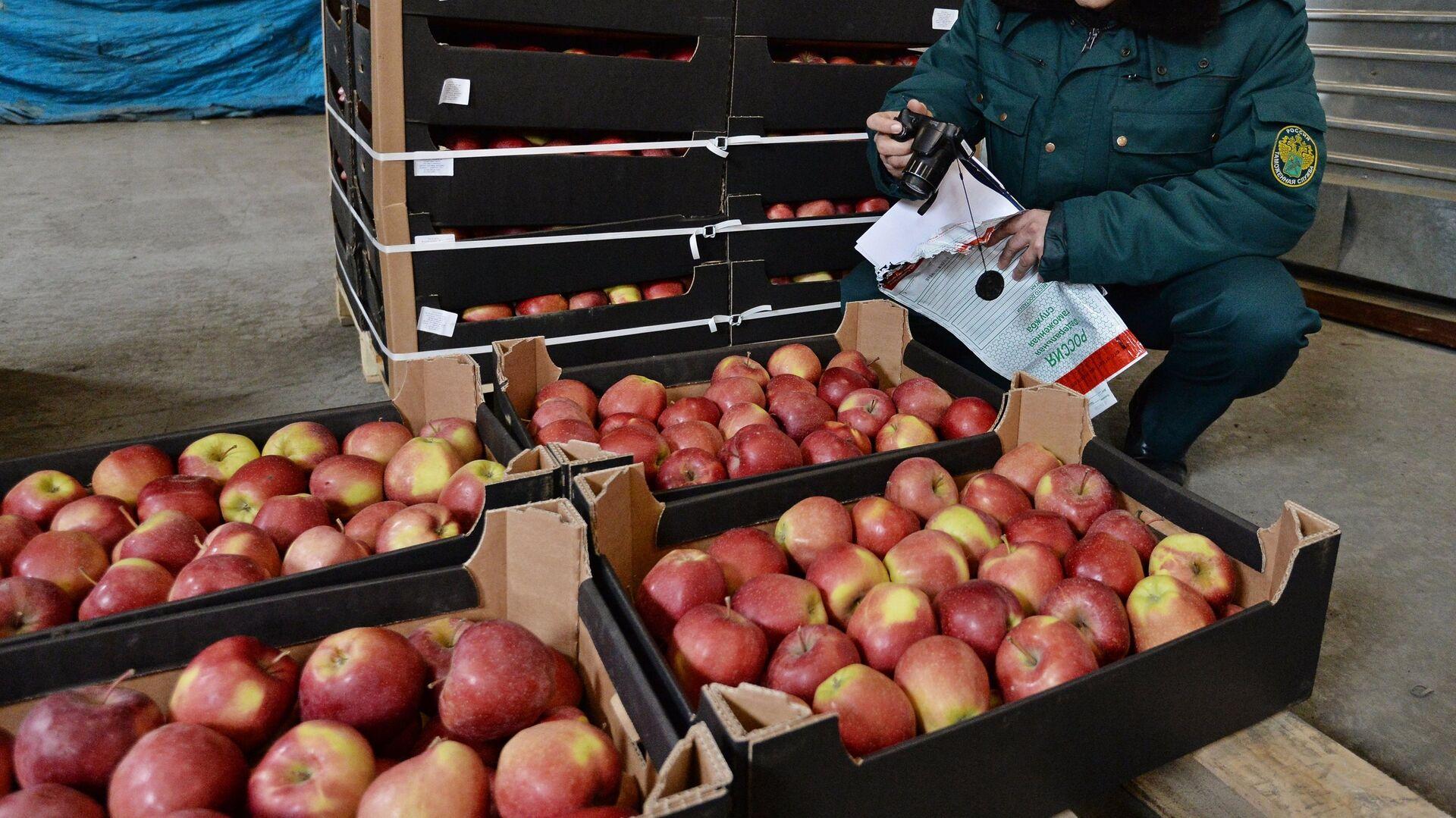 Минсельхоз предложил внести изменения в продовольственное эмбарго